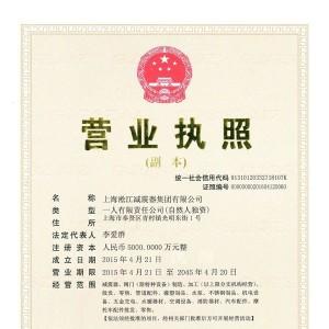 淞江集团营业执照